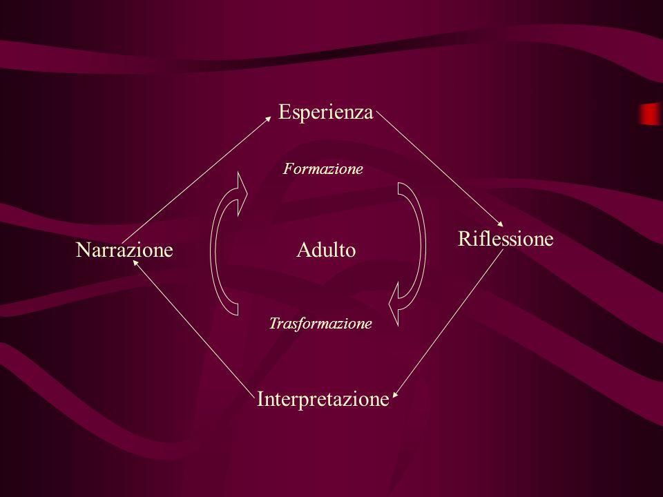 Esperienza Riflessione Narrazione Adulto Interpretazione Formazione