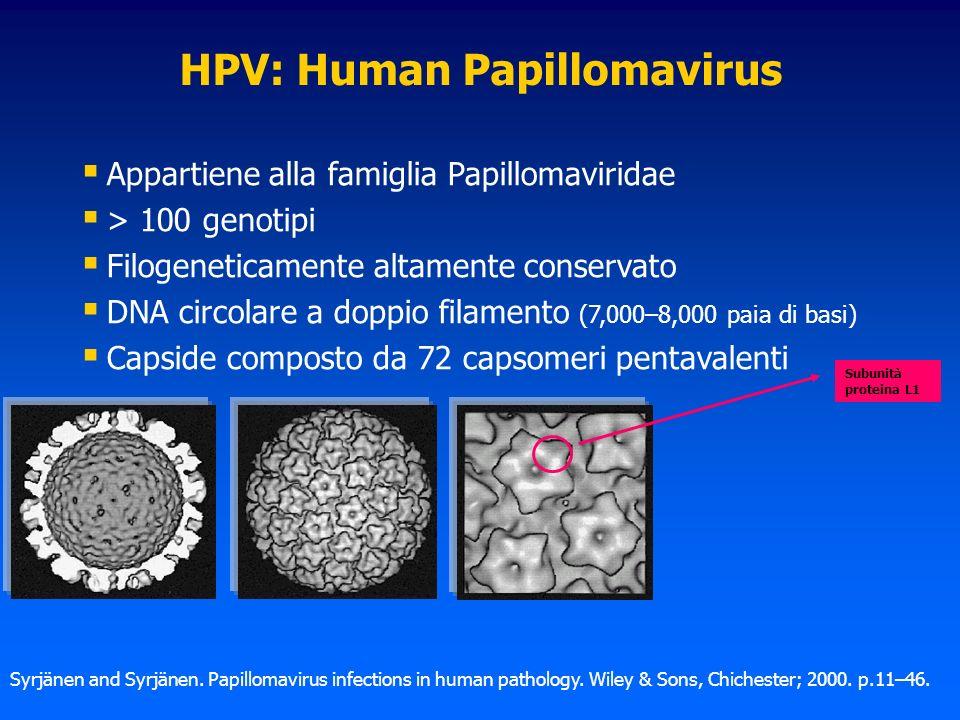 HPV: Human Papillomavirus