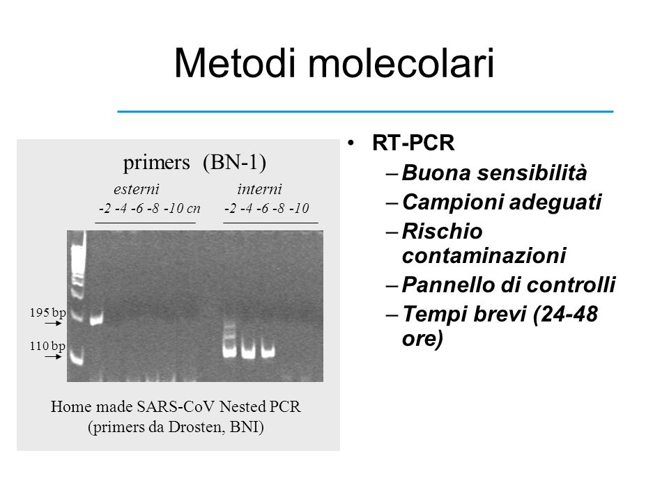 Home made SARS-CoV Nested PCR (primers da Drosten, BNI)