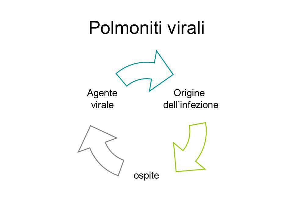 Polmoniti virali