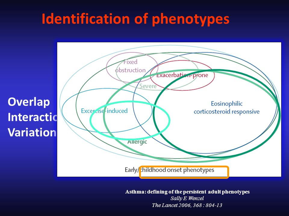 Asthma: defining of the persistent adult phenotypes