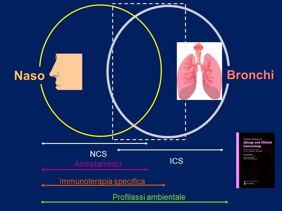 Naso Bronchi NCS ICS Antiistaminici Immunoterapia specifica