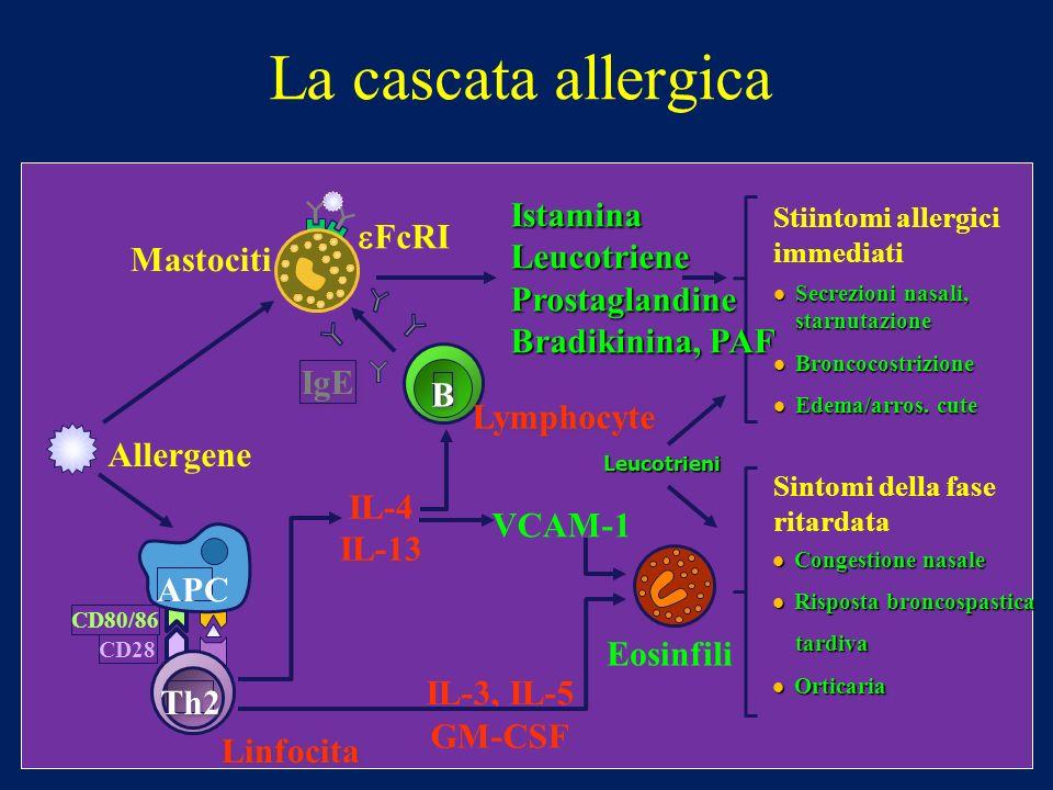 La cascata allergica Istamina eFcRI Leucotriene Prostaglandine