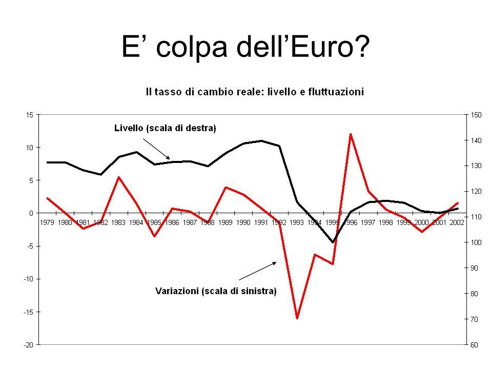 E' colpa dell'Euro