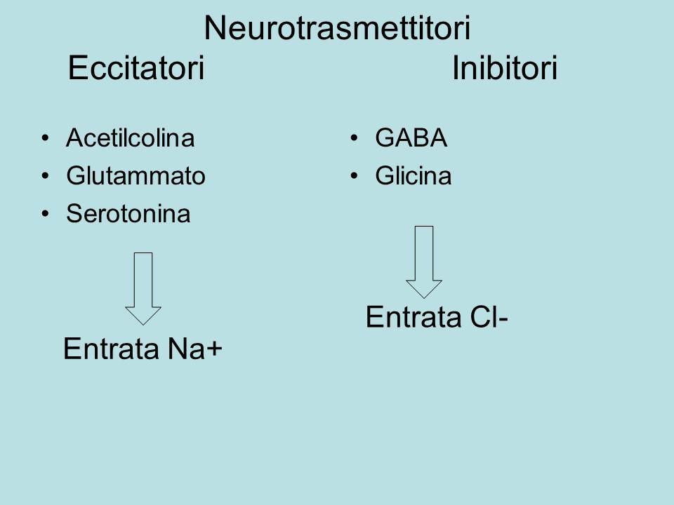 Neurotrasmettitori Eccitatori Inibitori