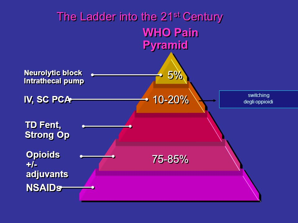 The Ladder into the 21st Century
