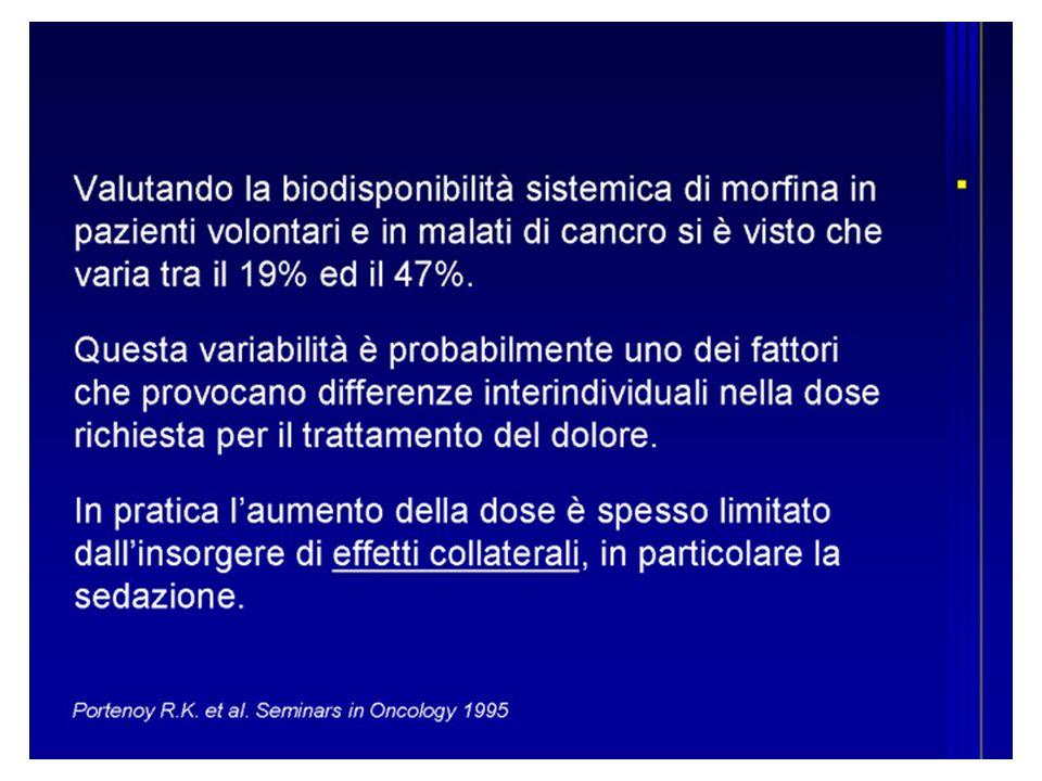 biodisponibilità