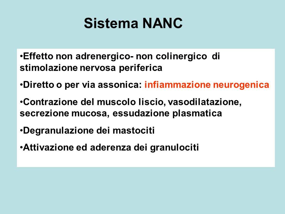Sistema NANC Effetto non adrenergico- non colinergico di stimolazione nervosa periferica. Diretto o per via assonica: infiammazione neurogenica.