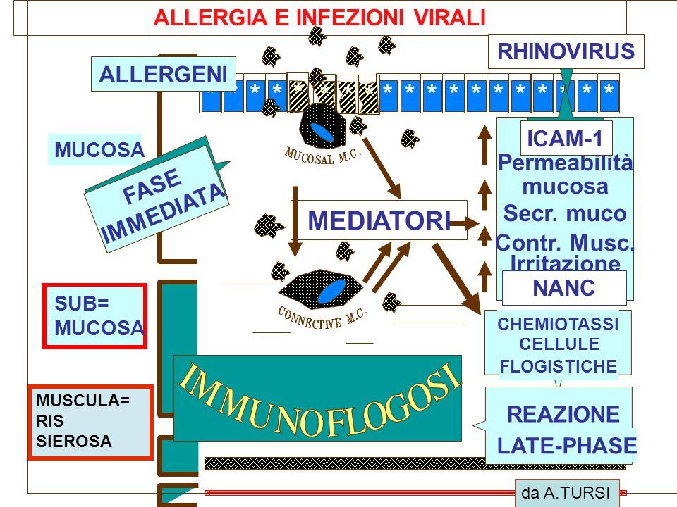 ALLERGIA E INFEZIONI VIRALI