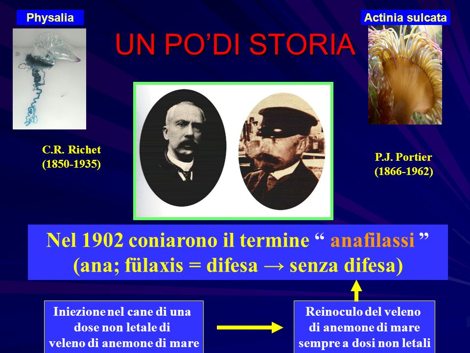 Physalia Actinia sulcata. UN PO'DI STORIA. C.R. Richet. (1850-1935) P.J. Portier. (1866-1962)