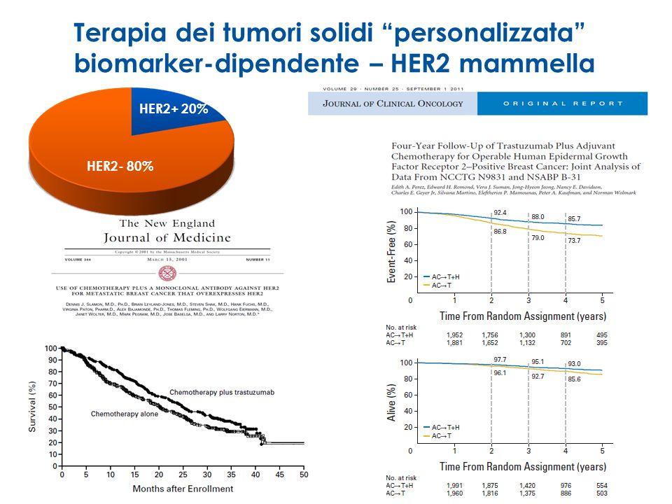 Terapia dei tumori solidi personalizzata biomarker-dipendente – HER2 mammella