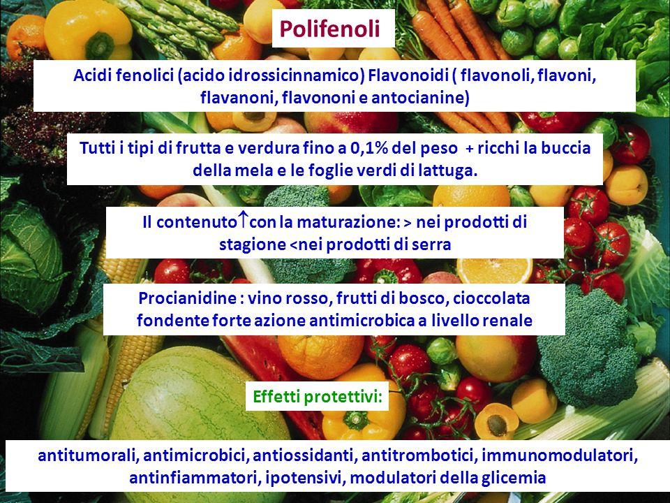 Polifenoli Acidi fenolici (acido idrossicinnamico) Flavonoidi ( flavonoli, flavoni, flavanoni, flavononi e antocianine)