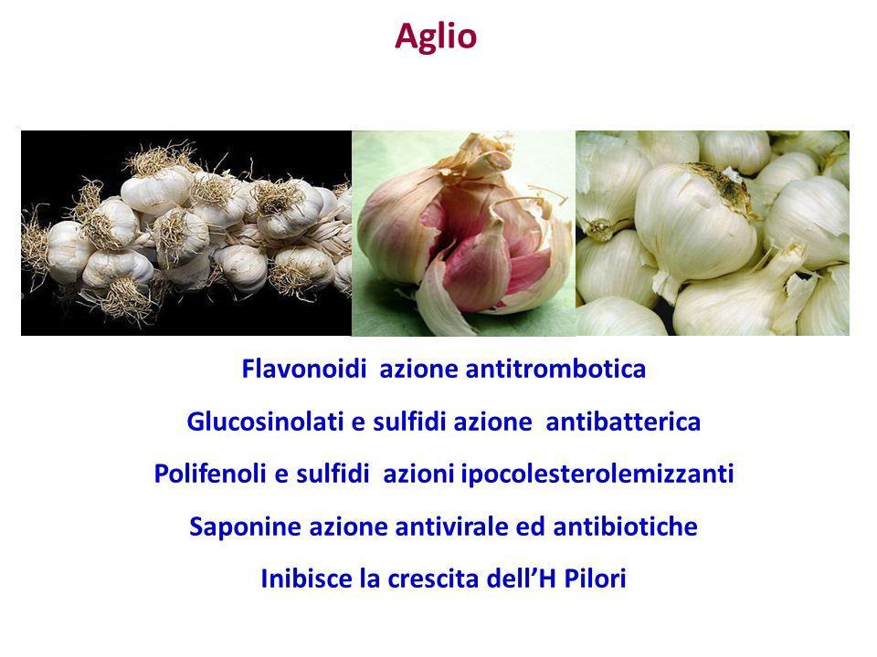 Aglio Flavonoidi azione antitrombotica