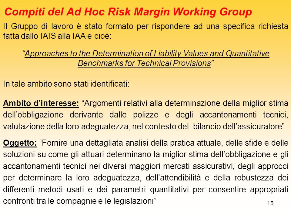 Compiti del Ad Hoc Risk Margin Working Group