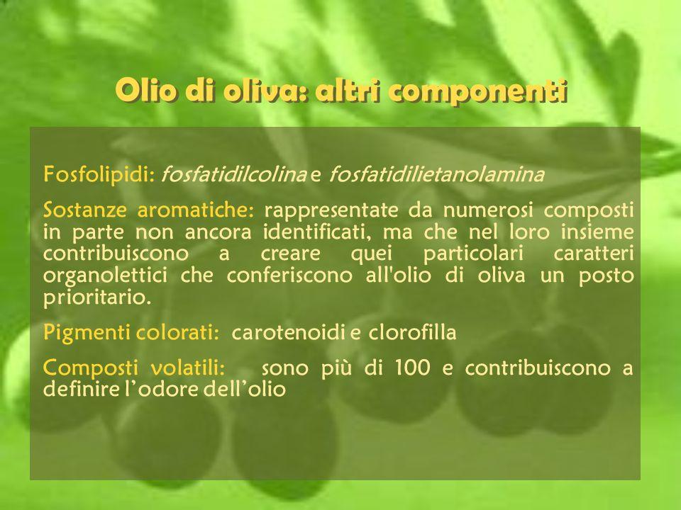 Olio di oliva: altri componenti