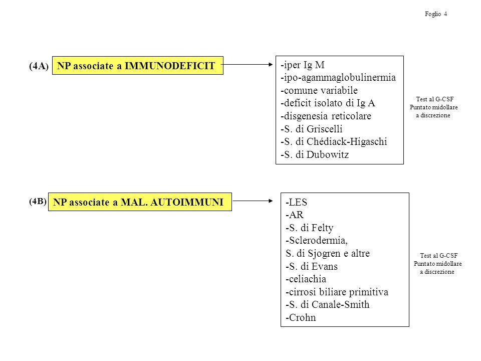 NP associate a IMMUNODEFICIT -iper Ig M -ipo-agammaglobulinermia