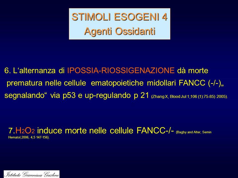 STIMOLI ESOGENI 4 Agenti Ossidanti