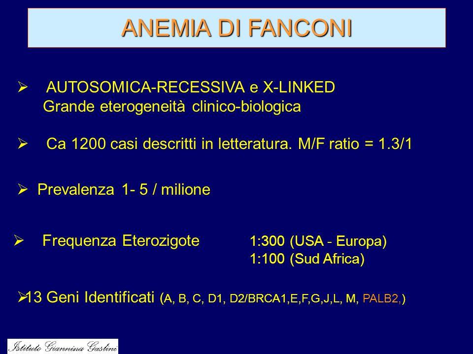 ANEMIA DI FANCONI AUTOSOMICA-RECESSIVA e X-LINKED