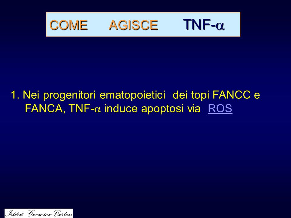COME AGISCE TNF- 1.