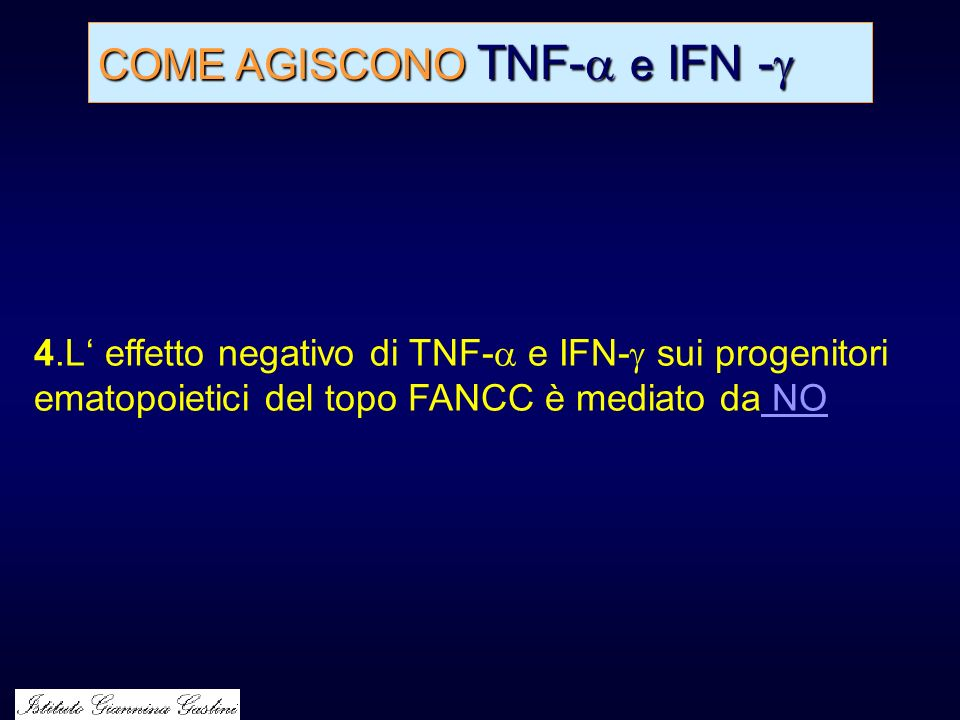 COME AGISCONO TNF- e IFN -