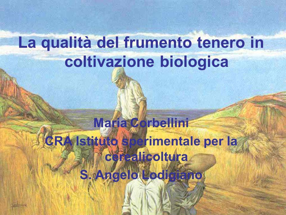 La qualità del frumento tenero in coltivazione biologica