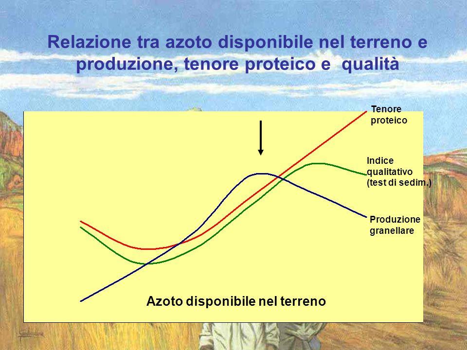 Relazione tra azoto disponibile nel terreno e produzione, tenore proteico e qualità