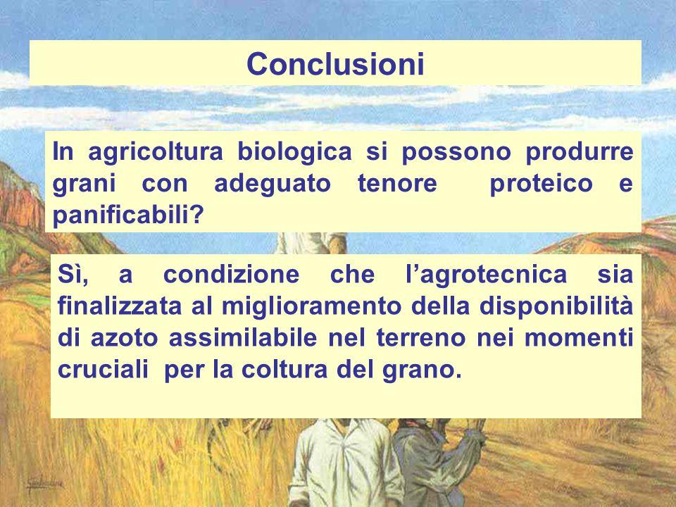 Conclusioni In agricoltura biologica si possono produrre grani con adeguato tenore proteico e panificabili