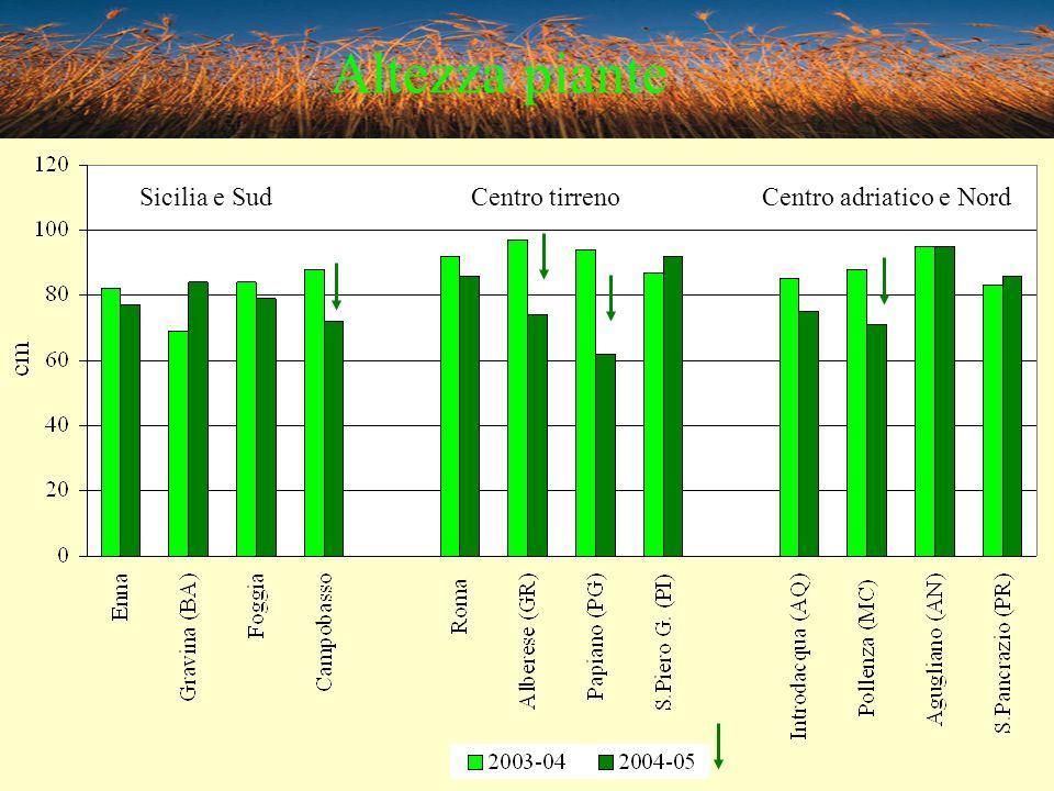 Altezza piante Sicilia e Sud Centro tirreno Centro adriatico e Nord