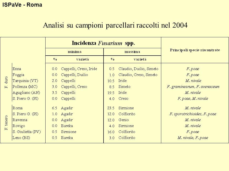 Analisi su campioni parcellari raccolti nel 2004