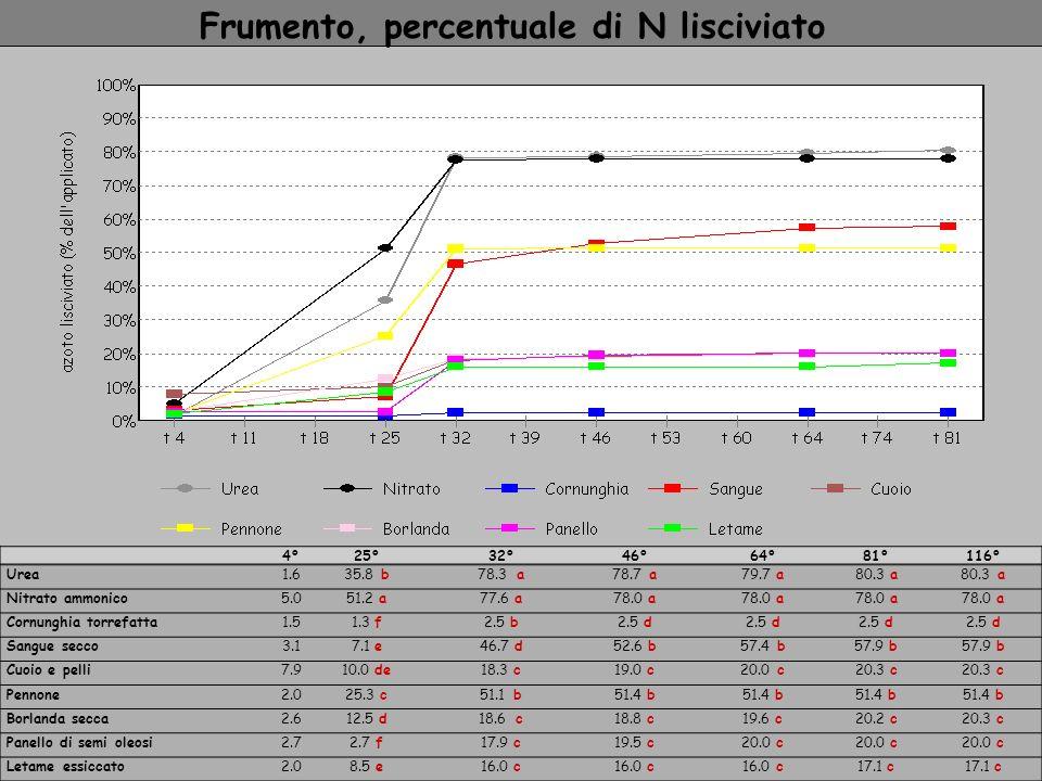 Frumento, percentuale di N lisciviato