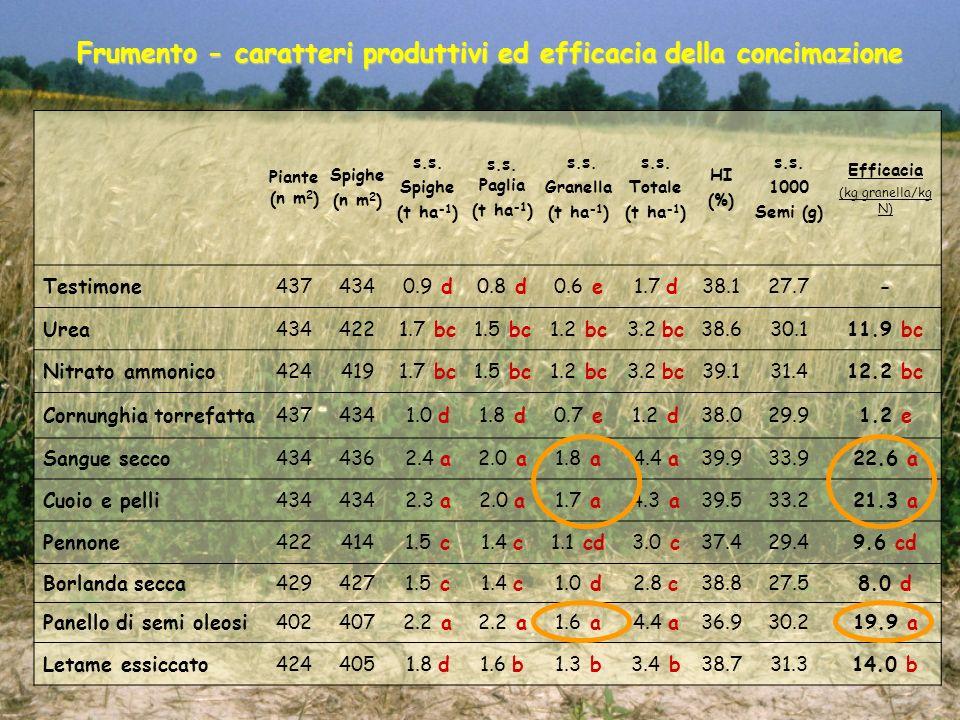 Frumento - caratteri produttivi ed efficacia della concimazione