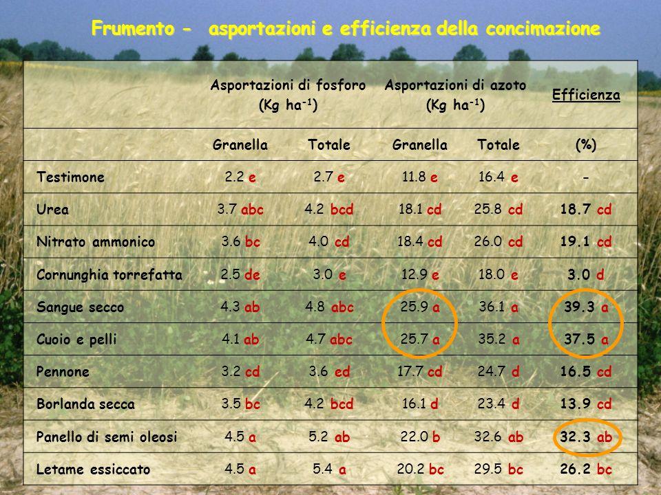 Frumento - asportazioni e efficienza della concimazione
