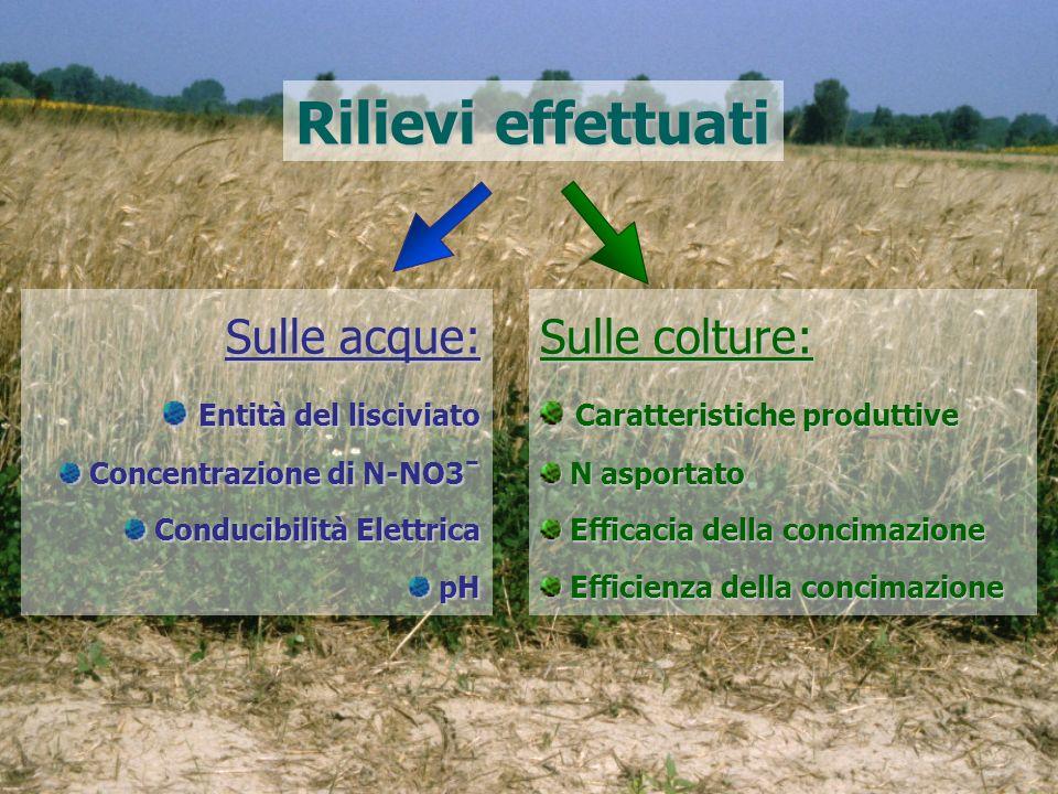 Rilievi effettuati Sulle acque: Sulle colture: Entità del lisciviato