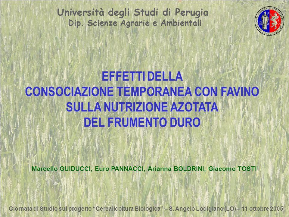 Università degli Studi di Perugia Dip. Scienze Agrarie e Ambientali
