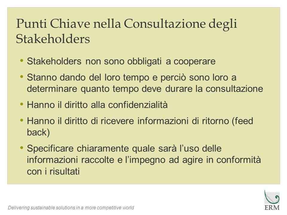Punti Chiave nella Consultazione degli Stakeholders