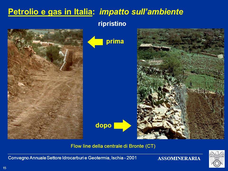 Petrolio e gas in Italia: impatto sull'ambiente