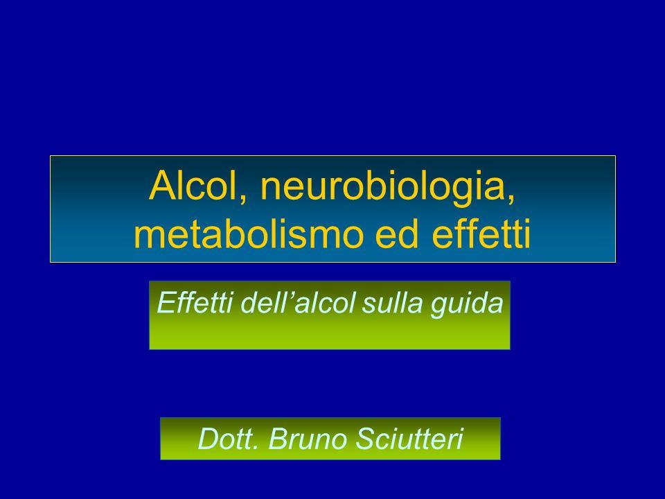 Alcol, neurobiologia, metabolismo ed effetti