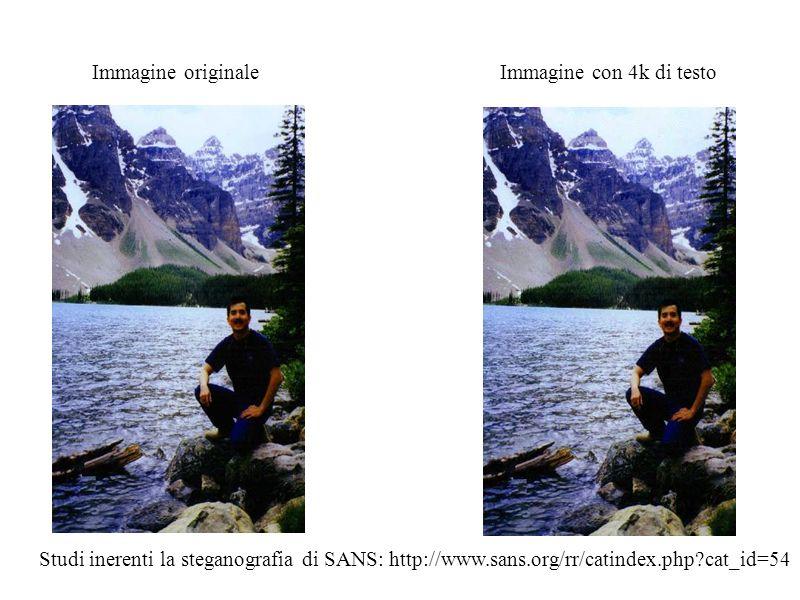 Immagine originale Immagine con 4k di testo.