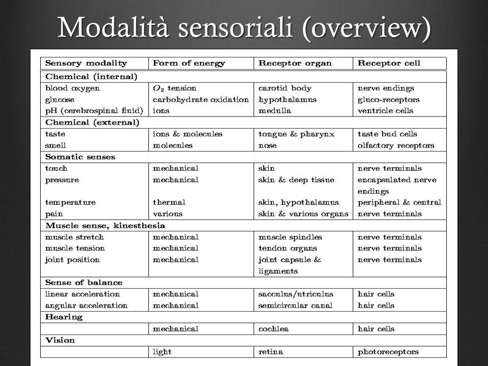 Modalità sensoriali (overview)