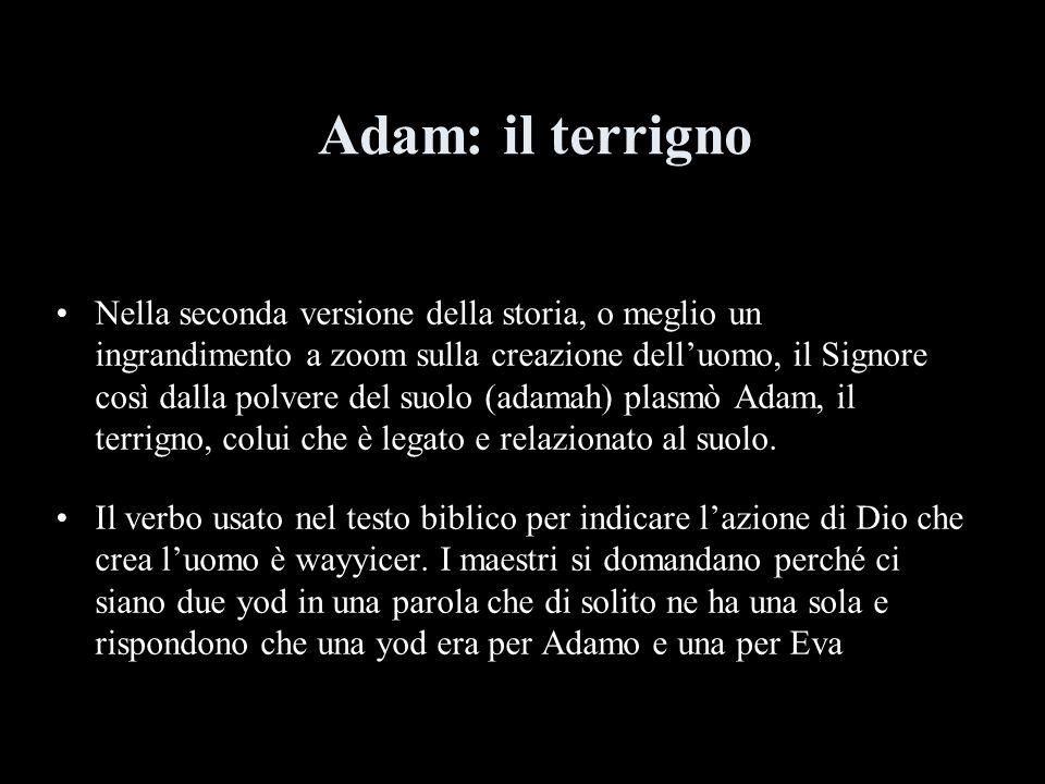 Adam: il terrigno