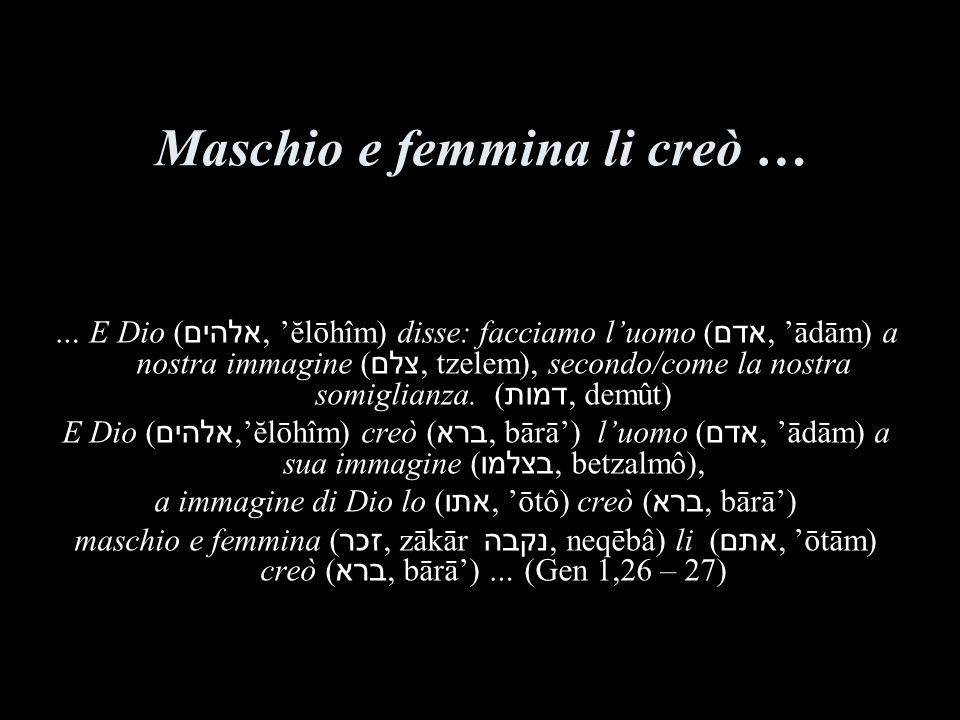 Maschio e femmina li creò …