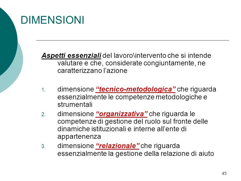 DIMENSIONIAspetti essenziali del lavoro\intervento che si intende valutare e che, considerate congiuntamente, ne caratterizzano l'azione.