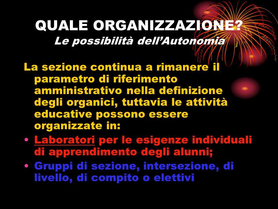 QUALE ORGANIZZAZIONE Le possibilità dell'Autonomia