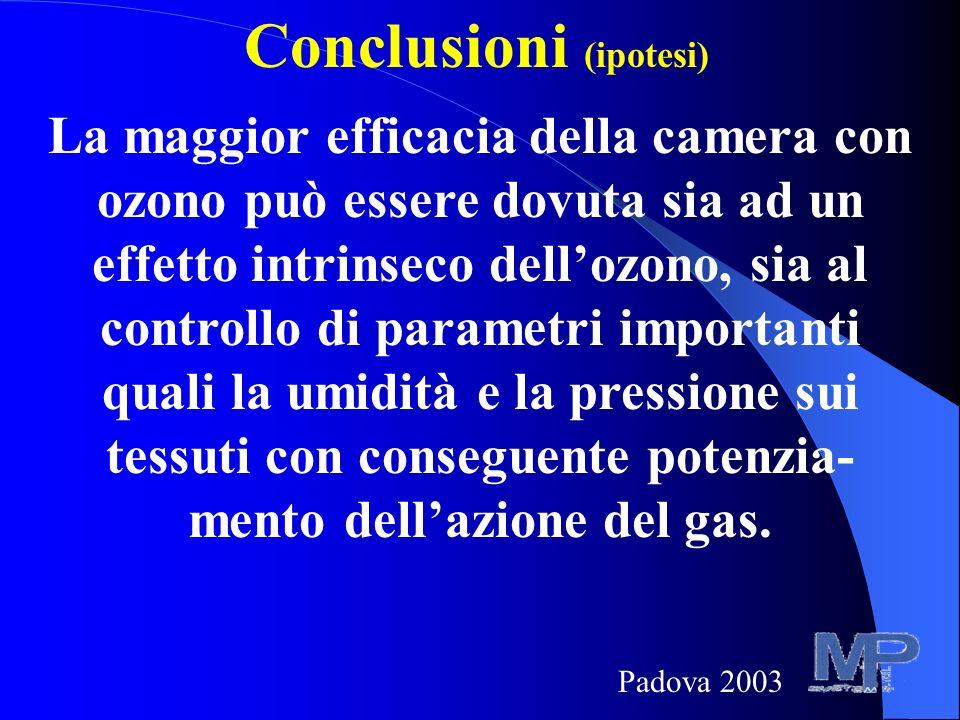 Conclusioni (ipotesi)