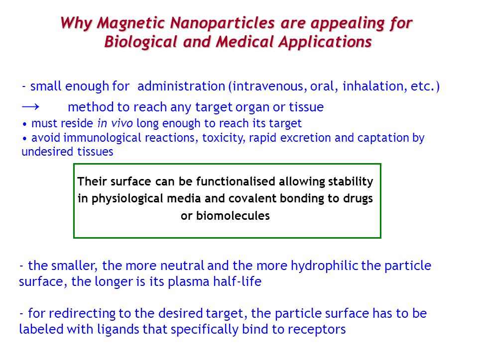 Why Magnetic Nanoparticles are appealing for