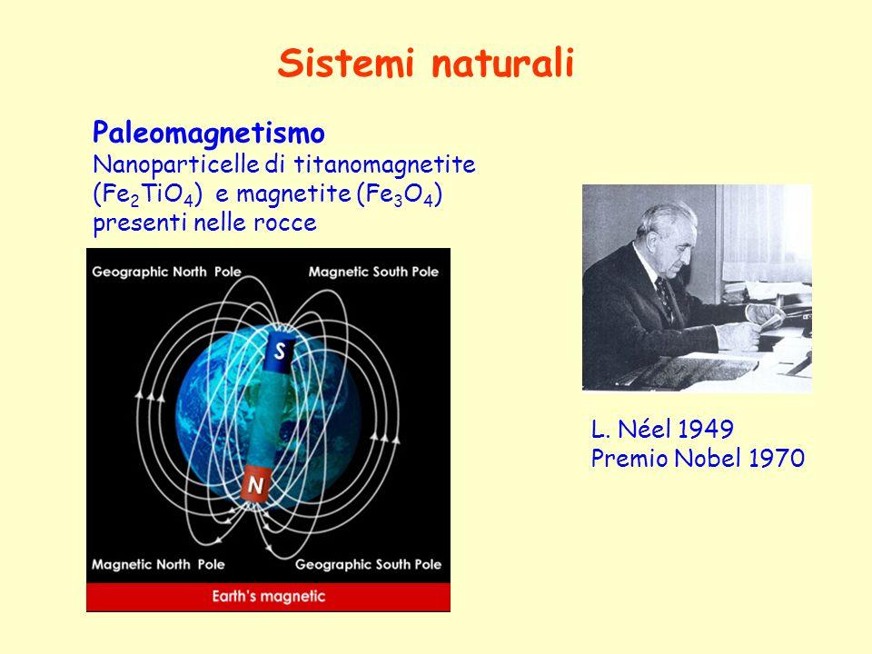 Sistemi naturali Paleomagnetismo Nanoparticelle di titanomagnetite