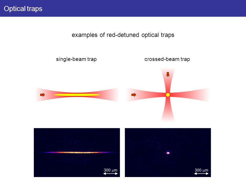 Optical traps examples of red-detuned optical traps