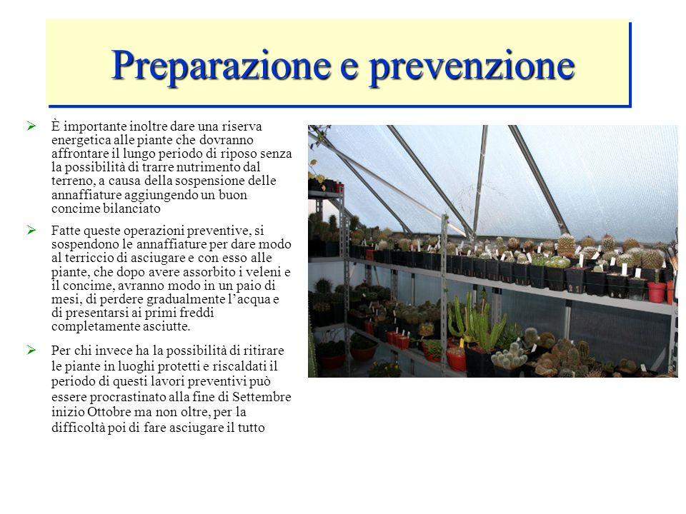 Preparazione e prevenzione