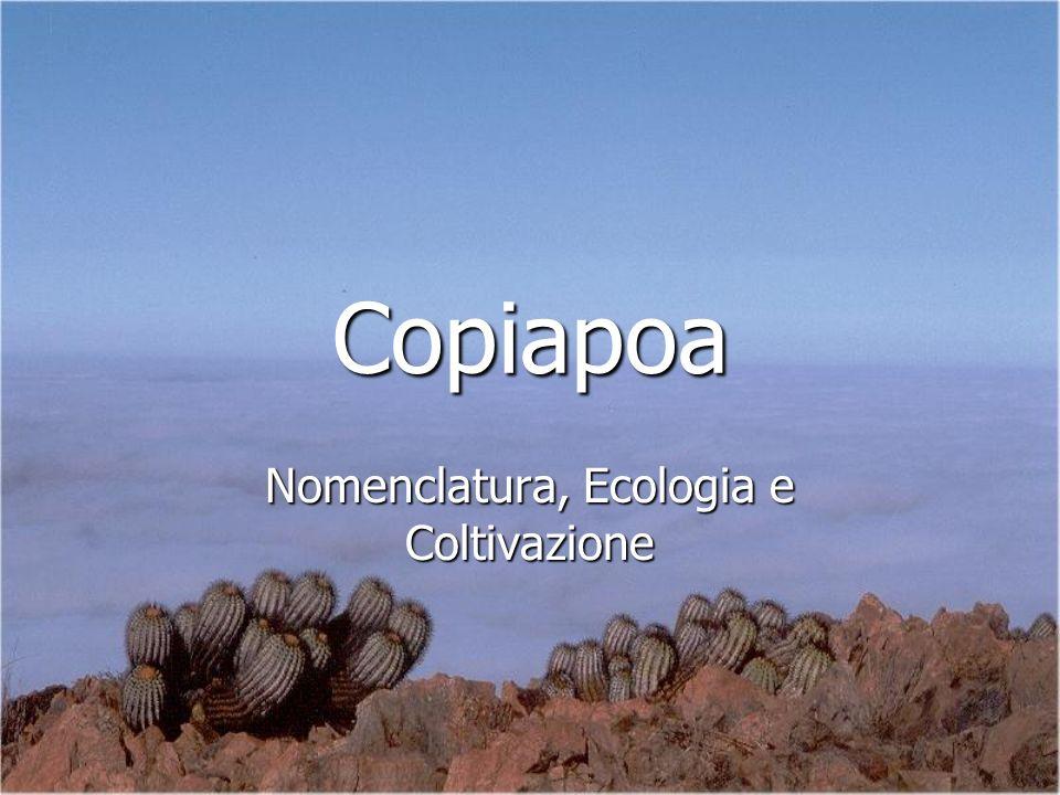 Nomenclatura, Ecologia e Coltivazione