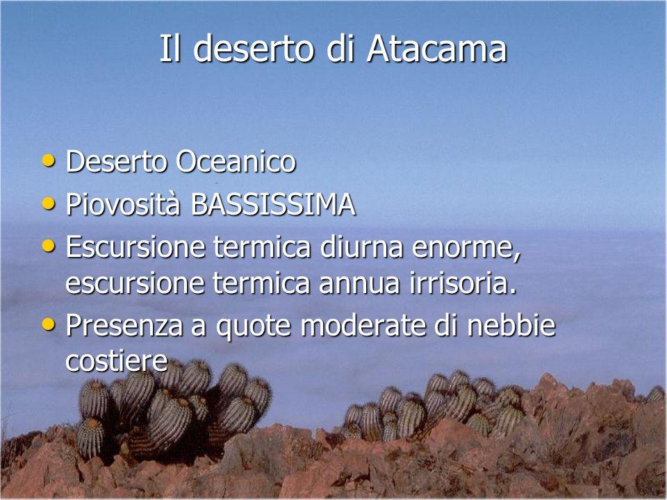 Il deserto di Atacama Deserto Oceanico Piovosità BASSISSIMA